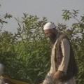 الشهيد المجاهد / عماد حماد