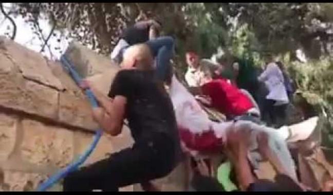 شاهد كيف هرب المقدسيون جثمان الشهيد محمد حسن ابو غنام من فوق حائط المستشفى بعد نية الاحتلال سرقة جثمانه واحتجازه