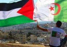 حماس تهنئ الجزائر بتأهل منتخبها إلى نهائي أمم افريقيا 2019