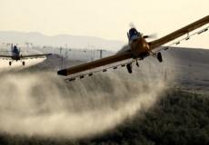 رش المبيدات الكيميائية